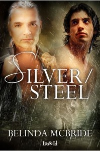 Silver:Steel cover