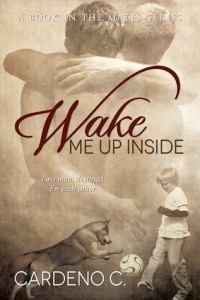 Wake Me Up Inside by Cardeno C