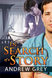 In Search of a story cover