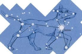Canis Major Dog Star