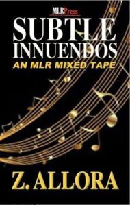 Subtle Inneundos cover