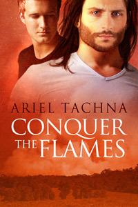 Conquer The Flames cover