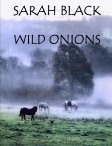 Wild Onions cover