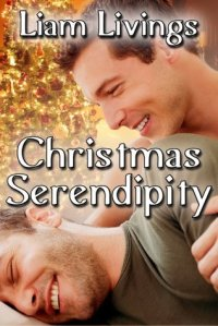 Christmas Serendipity cover