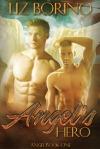 Angel's Hero cover