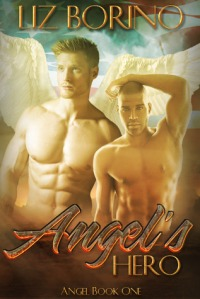 Angel's Hero cover