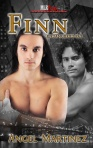 Finn_432(1) cover