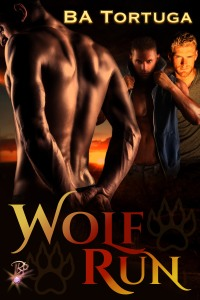 Wolf Run cover