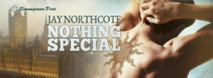 NothingSpecial_FBbanner_DSP