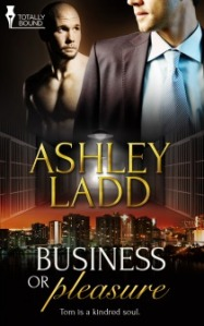 Business or Pleasure cover