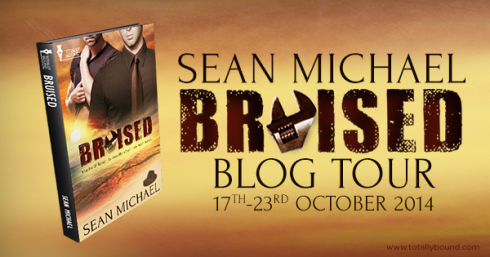 Bruised_SeanMichael_BlogTour_600x315_final