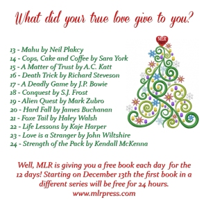12 Days of MLR Christmas