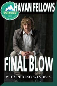 Final Blow cover