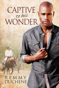 Captive to His Wonder cover