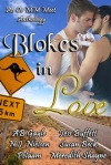 Blokes IN Love Anthology cover