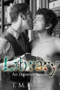 4x6thelibrary_large