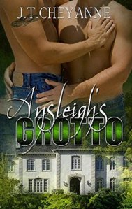 Ansleigh's Grotto cover