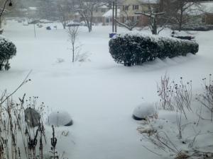 February 22 snow