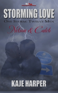 Nelson and Caleb Storming Love cover