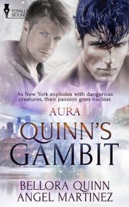 Quinn's Gambit cover