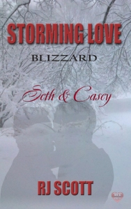 STorming Love- Blizzard cover
