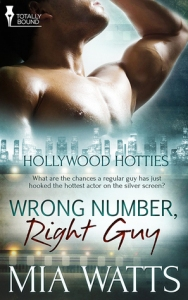 Wrong Number, Right Guy cover