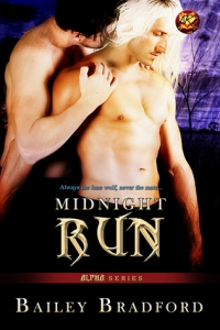 Midnight Run cover