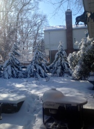 Snow Pic March 6 2015 2
