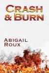 Crash & Burn cover