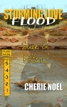 SamPatric_CherieHall_StormingFlood