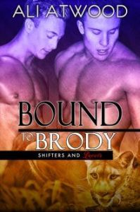 Bound To Brody cover