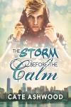 StormBeforeTheCalm[The]FS