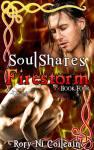Firestorm New Cover