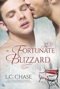 A Fortunate Blizzard cover