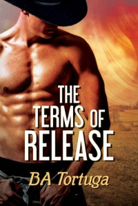 The Terms of Release cover