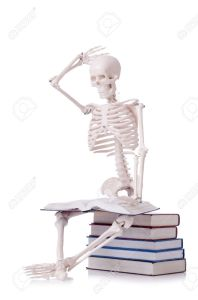 skeleton reading books