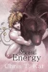 Secret Energy Cover