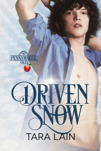 Driven Snow cover