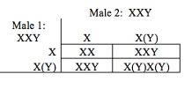 table Y negative