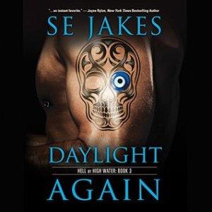 Daylight Again audiobook