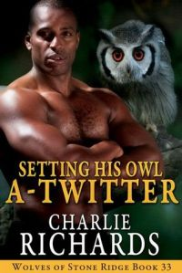 Setting His Owl A Twitter