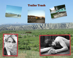 Trailer Trash Collage