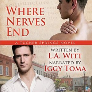 Where Nerves End audiobook