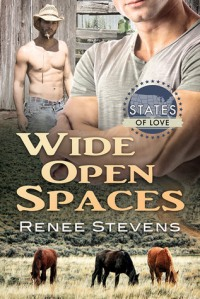 Wide Open Spaces by Renee Stevens