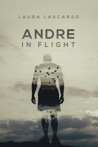 andreinflightfs_v1