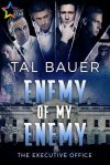 enemy-of-my-enemy-by-tal-bauer