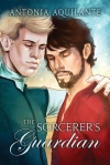 the-sorcerers-guardian