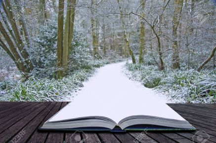 books-into-snowpath