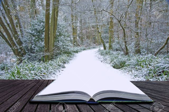 books-into-snowpath