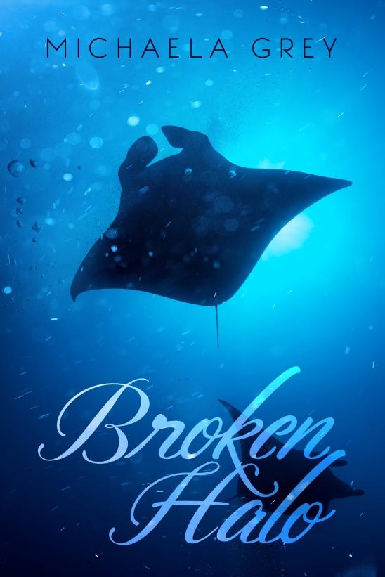 brokenhalofs_v1-1